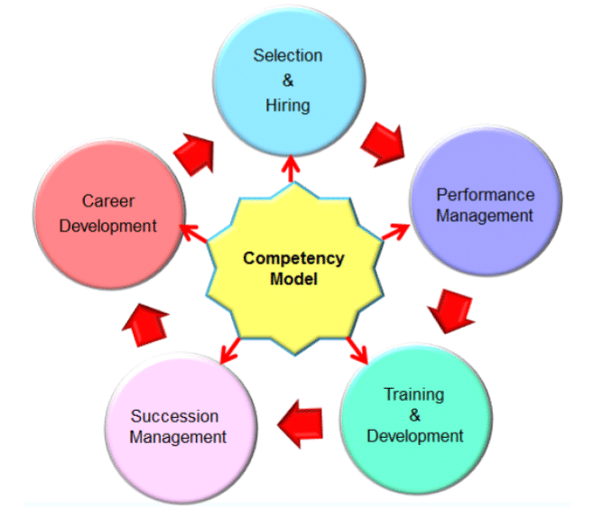 Executive Consulting and Coaching competency-Modeling